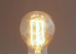 Glühlampe Edison Retro Carbon 40W 60mm E27
